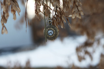 Vintage watch with chain on the branches of trees in the spring.