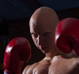 fighter in red gloves