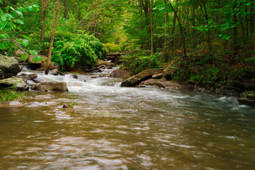 Fresh Water Stream Flowing Swiftly Over Rocky Forest Landscape Wall mural