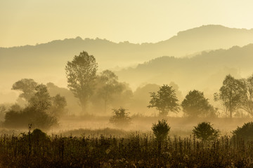 Magical autumn landscape with sun rays in the morning. Vintage landscapes. No efect filter.