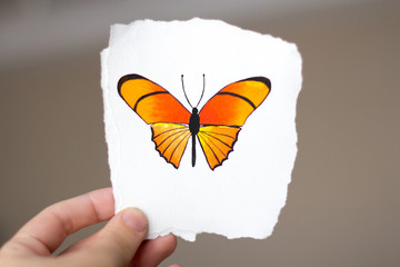 watercolor butterfly pattern on white paper in hand
