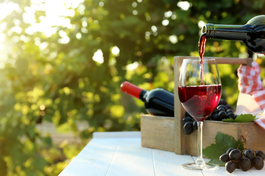 Pouring of red wine into glass on table in vineyard