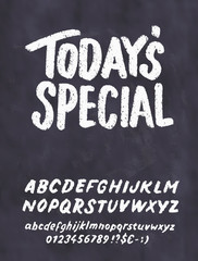 Today's special menu. Chalkboard menu template.