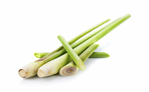 fresh lemongrass isolated on white background