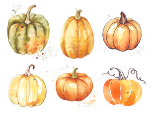 Set Pumpkin, watercolor hand drawing