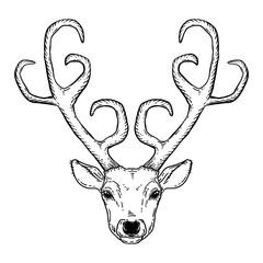 Hand drawn deer head tribal style