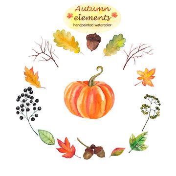Handpainted watercolor autumn elements on white background: pumpkin, leaves and berries