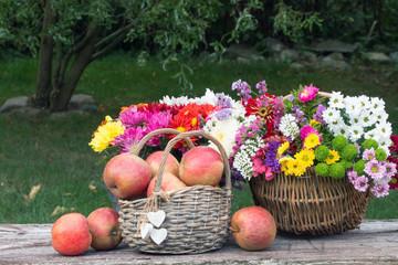 Herbst Blumen im Weidenkorb Chrysanthemen und Äpfel auf Holzbrett im Garten