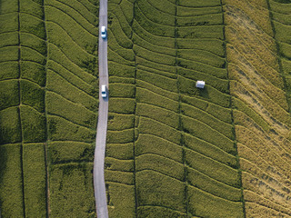 High angle view of vehicles moving on road by green landscape Wall mural