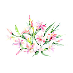 Watercolor colorful bouquet alstroemeria flower. Floral botanical flower. Isolated illustration element. Aquarelle wildflower for background, texture, wrapper pattern, frame or border.