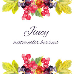 colorful watercolor composition with black and red currants