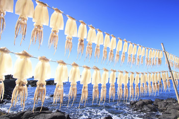 Squids drying on strings at beach against clear blue sky during sunny day