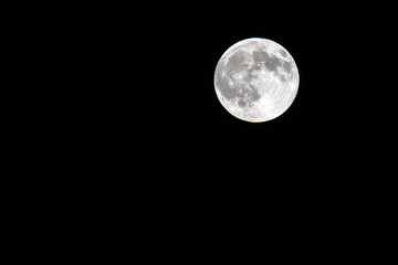 Low angle view of full moon
