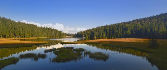 GROSSER ARBERSEE mit den schwimmenden Inseln - Bayerischer Wald-Niederbayern