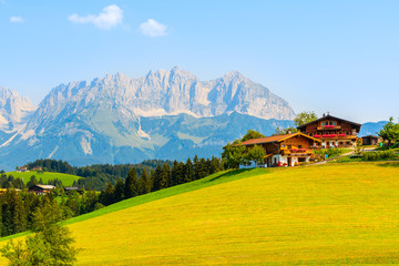 Wall Mural - Traditional houses on green meadow in Gieringer Weiher mountain area, Kitzbuhel Alps, Austria