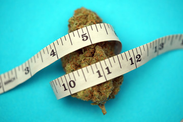 Using Medical Cannabis To Treat Diabetes and For Weight Loss
