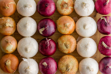 Neat alternating rows of different colored onions
