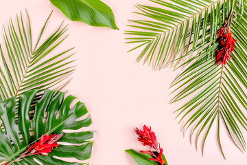 Tropical palm leaves Monstera and flowers Cannes on pink background. Flat lay, top view minimal concept.
