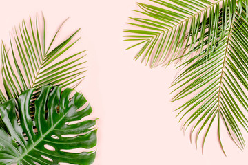 Exotic background, pattern with tropical palm leaves Monstera on pink background. Flat lay, top view minimal concept. Wall mural