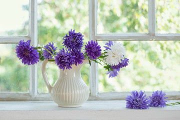 purple asters in  jug on  windowsill