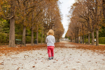 Little child walking on path in autumn landscape. Kleinkind geht durch herbstliche Landschaft.