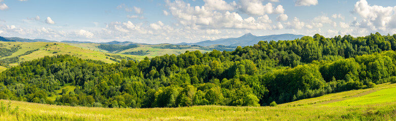 panorama of beautiful autumn countryside. forest behind the meadow. gorgeous cloudscape on the sky above the distant mountain. wonderful warm and sunny september day for a walk or hike
