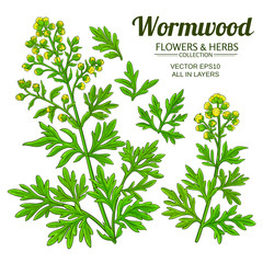 wormwood vector set
