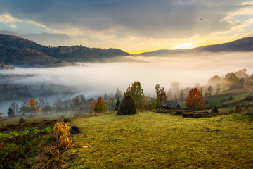 rural area on foggy autumn morning. gorgeous countryside landscape in mountains