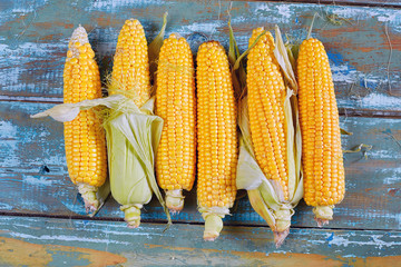 Cob fresh yellow corn lying on a wooden background. Rustic style
