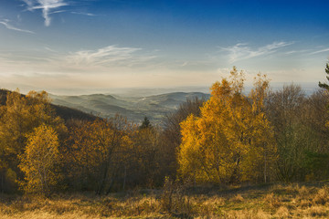 Fototapeta Złota Polska Jesień w górach. Pełne słońce i niebieskie niebo. Pięne żółte liście, świeci słońce. Malowniczy pejzaż. obraz