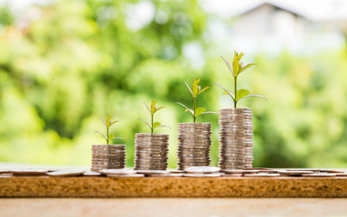 step of coins stacks with tree growing on top, money, saving and investment or family planning concept.