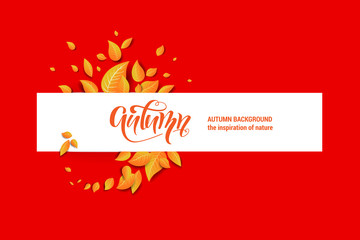 Beautiful fall leaves banner