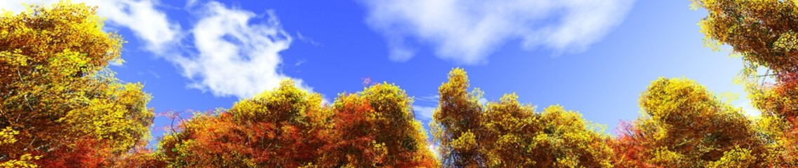 Autumn trees against a blue sky with clouds.