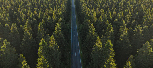 Aerial view from above of country road through the green forest