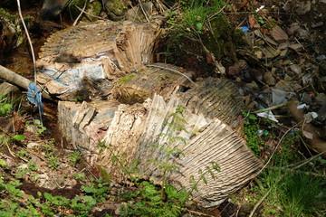 Wilde Müllkippe im Wald - Verbotene Entsorgung