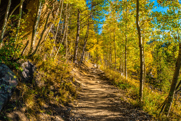 Colorful Fall Hike in the Rocky Mountains in Colorado