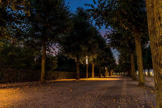 Allee im Schlossbezirk in Karlsruhe bei Nacht