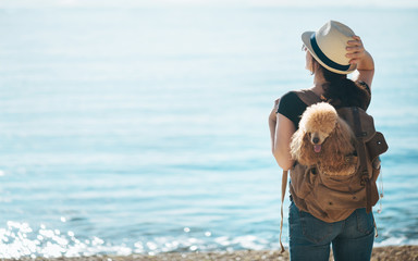 Woman traveler with dog in the backpack and looking at sea. Concept of travel.
