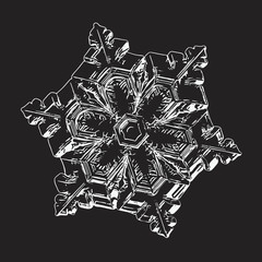 Snowflake isolated on black background. This vector illustration based on macro photo of real snow crystal: small star plate with six short, broad arms, glossy surface and complex inner structure.