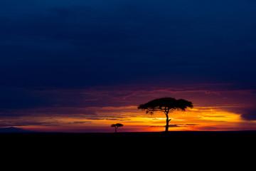 Masai Mara at sunset Wall mural