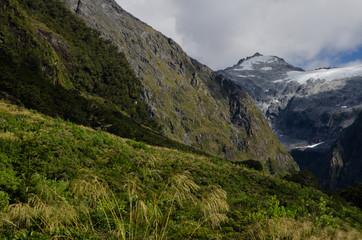 Fiordland National Park. Southland. South Island. New Zealand.