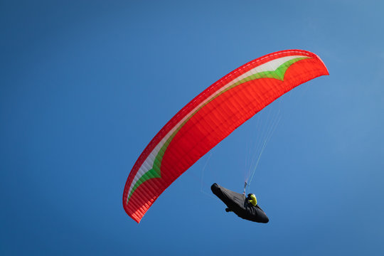Close up, Guy flying on the clearly blue sky with a red paraglider,extreme activity