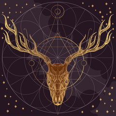 Sketch of deer skull on dark background. Vector illustration for posters, cards and other items.