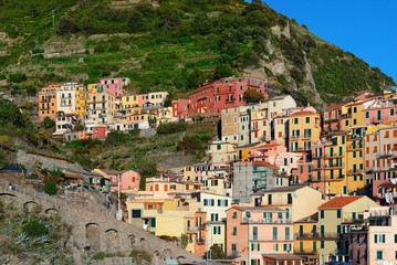 Printed kitchen splashbacks Purple Manarola buildings in Cinque Terre