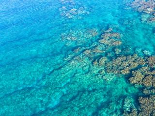 浅い海のリーフ