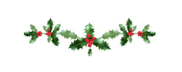 Holiday Christmas holly