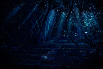 Wall Mural - Stair in night forest