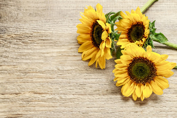 Wall Mural - Sunflowers on wooden background