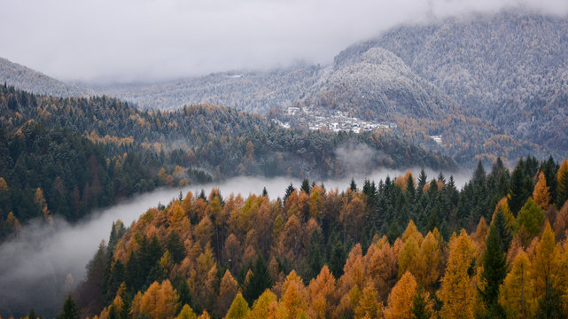 the fog in the valley of the river divides the winter from autumn