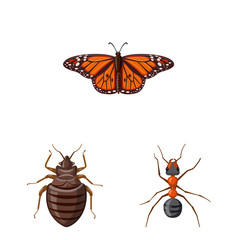 Vector design of insect and fly logo. Set of insect and element vector icon for stock.